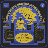 King Gizzard and the Lizzard Wizzard - Flying Microtonal Banana