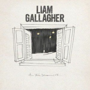 Liam Gallagher - All you're dreaming of (WHITE VINYL)